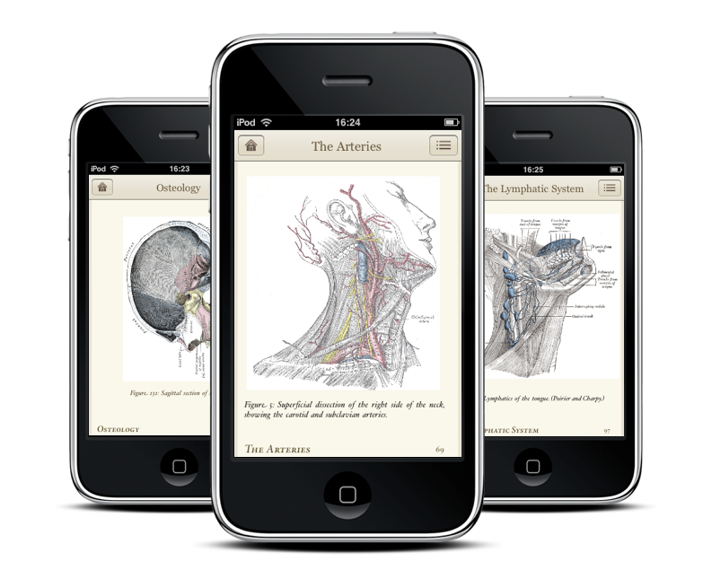 Ubiklabs com - Gray's Anatomy Book